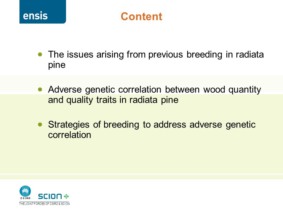 THE JOINT FORCES OF CSIRO & SCION  The issues arising from previous breeding in radiata pine  Adverse genetic correlation between wood quantity and quality traits in radiata pine  Strategies of breeding to address adverse genetic correlation Content