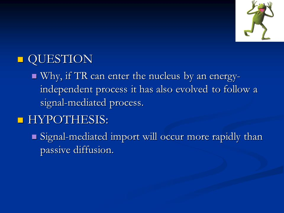 QUESTION QUESTION Why, if TR can enter the nucleus by an energy- independent process it has also evolved to follow a signal-mediated process.