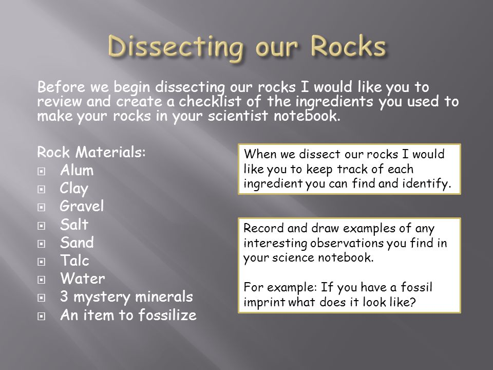 Before we begin dissecting our rocks I would like you to review and create a checklist of the ingredients you used to make your rocks in your scientist notebook.