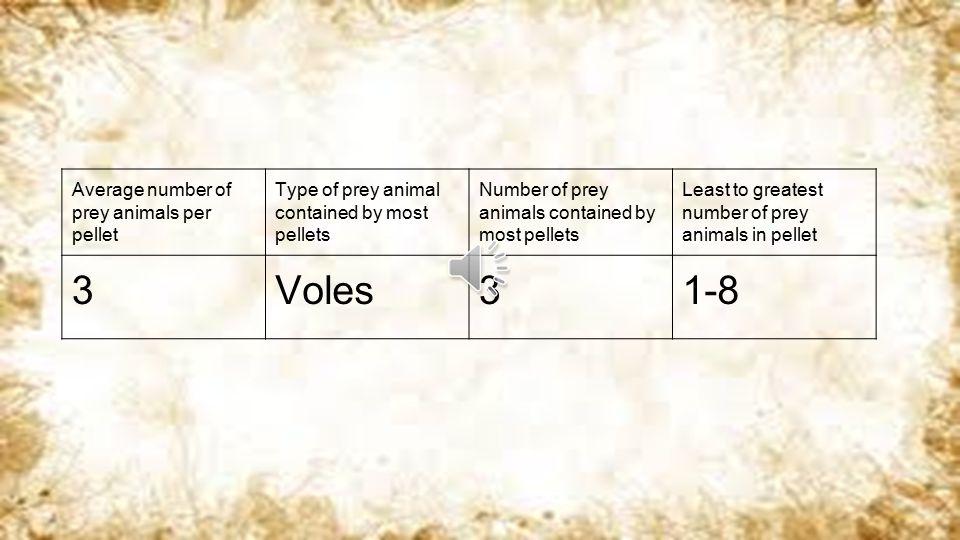 Average number of prey animals per pellet Type of prey animal contained by most pellets Number of prey animals contained by most pellets Least to greatest number of prey animals in pellet 3Voles31-8