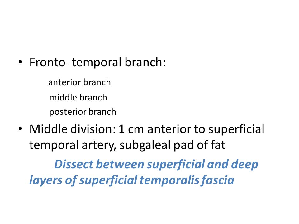 Fronto- temporal branch: anterior branch middle branch posterior branch Middle division: 1 cm anterior to superficial temporal artery, subgaleal pad o