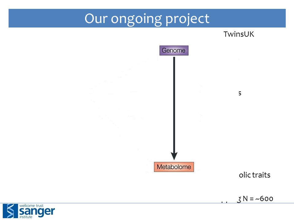 Our ongoing project TwinsUK ~600k SNPs ~48k Probes ~32k Metabolic traits Overlapping N = ~600