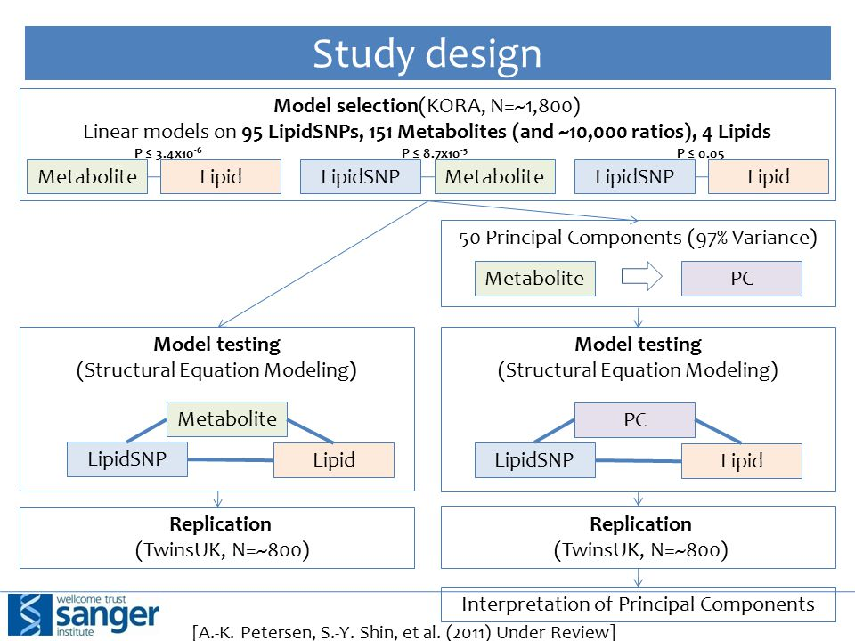 Study design Model selection(KORA, N=~1,800) Linear models on 95 LipidSNPs, 151 Metabolites (and ~10,000 ratios), 4 Lipids P ≤ 3.4x10 -6 P ≤ 8.7x10 -5 P ≤ 0.05 LipidSNPMetabolite LipidLipidSNPLipid [A.-K.