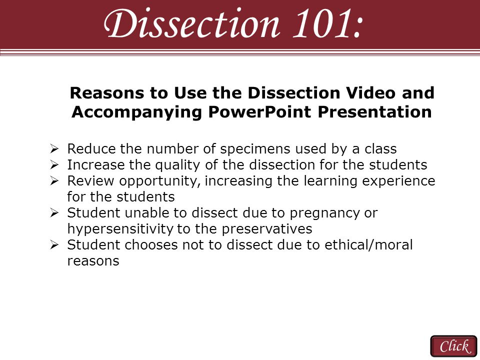Reasons to Use the Dissection Video and Accompanying PowerPoint Presentation  Reduce the number of specimens used by a class  Increase the quality of the dissection for the students  Review opportunity, increasing the learning experience for the students  Student unable to dissect due to pregnancy or hypersensitivity to the preservatives  Student chooses not to dissect due to ethical/moral reasons Dissection 101: Click