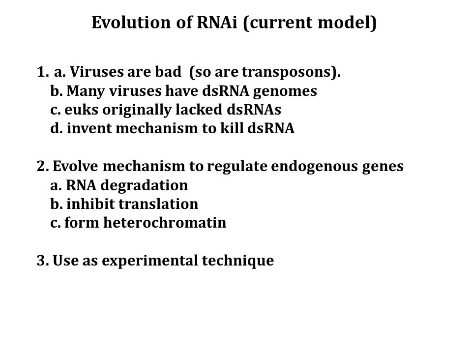Evolution of RNAi (current model) 1.a. Viruses are bad (so are transposons). b. Many viruses have dsRNA genomes c. euks originally lacked dsRNAs d. in