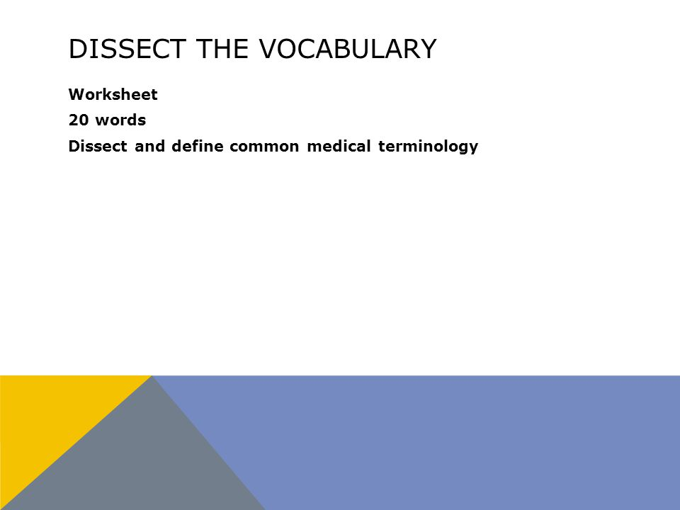 DISSECT THE VOCABULARY Worksheet 20 words Dissect and define common medical terminology