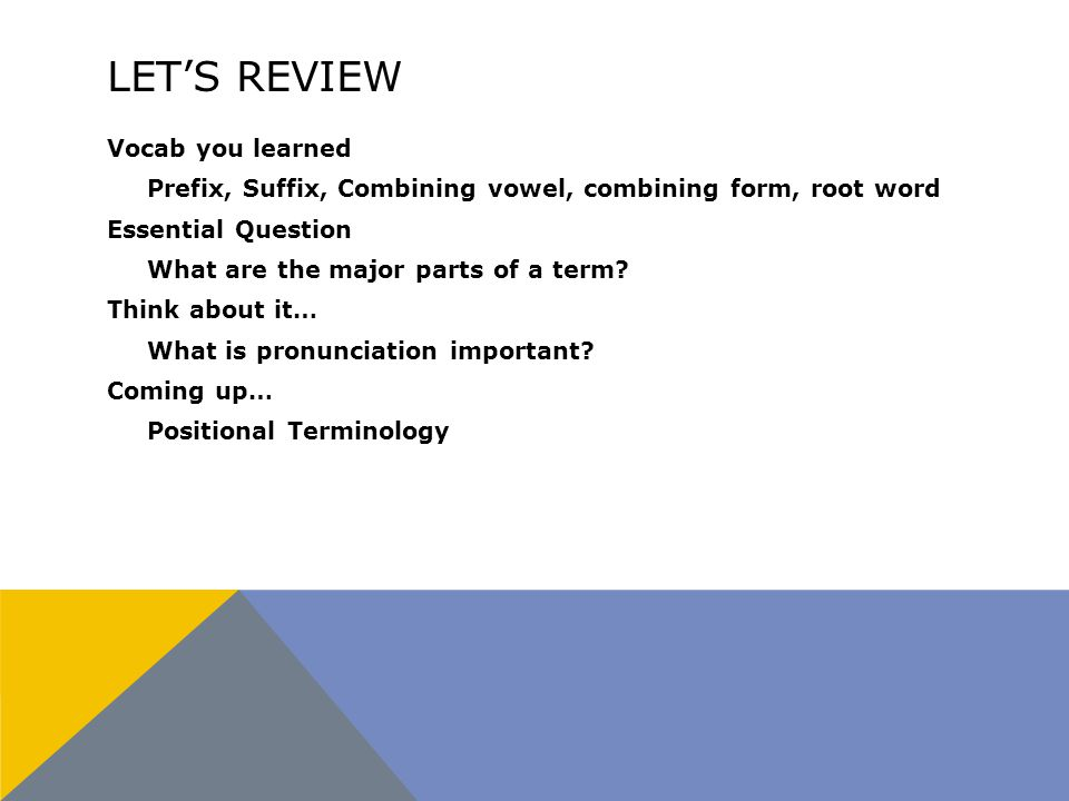 LET'S REVIEW Vocab you learned Prefix, Suffix, Combining vowel, combining form, root word Essential Question What are the major parts of a term.