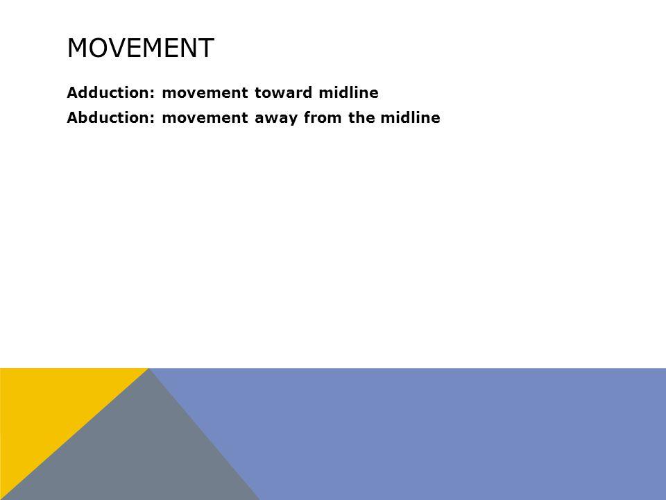 MOVEMENT Adduction: movement toward midline Abduction: movement away from the midline
