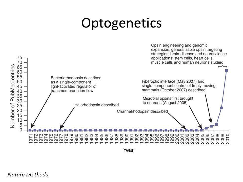 Optogenetics Nature Methods
