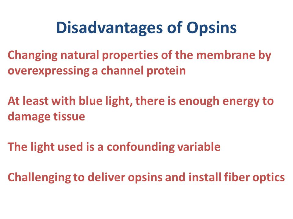 Disadvantages of Opsins Changing natural properties of the membrane by overexpressing a channel protein At least with blue light, there is enough energy to damage tissue The light used is a confounding variable Challenging to deliver opsins and install fiber optics