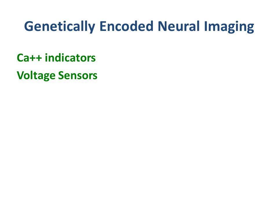 Genetically Encoded Neural Imaging Ca++ indicators Voltage Sensors