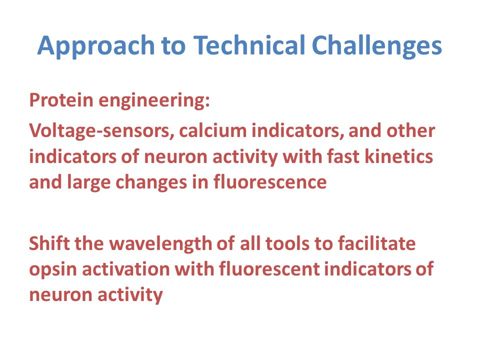Approach to Technical Challenges Protein engineering: Voltage-sensors, calcium indicators, and other indicators of neuron activity with fast kinetics and large changes in fluorescence Shift the wavelength of all tools to facilitate opsin activation with fluorescent indicators of neuron activity