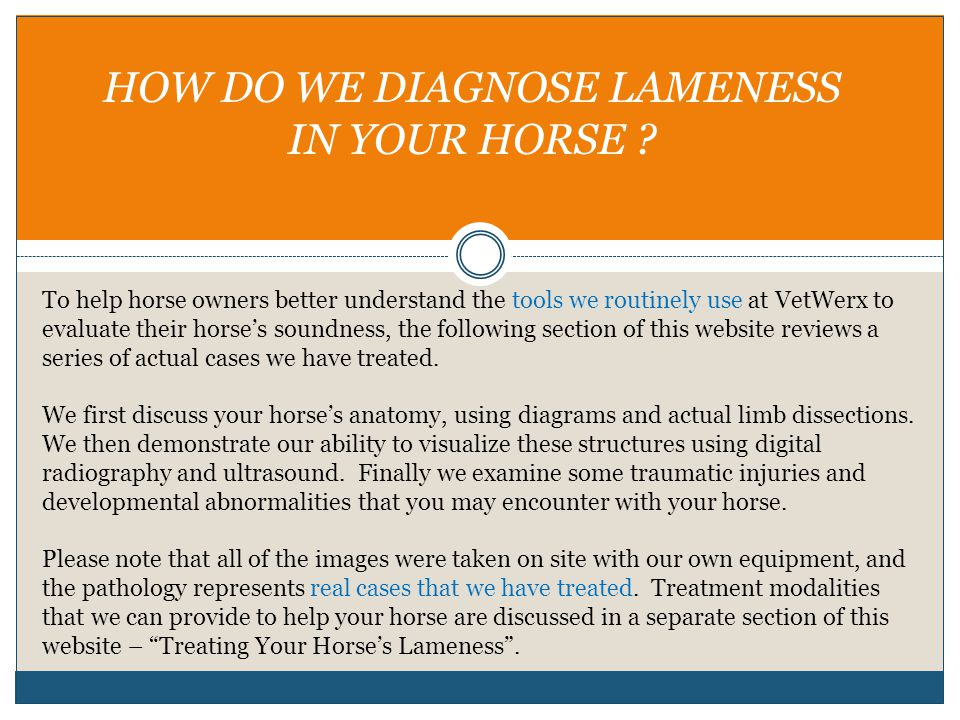 HOW DO WE DIAGNOSE LAMENESS IN YOUR HORSE ? To help horse owners better understand the tools we routinely use at VetWerx to evaluate their horse's sou