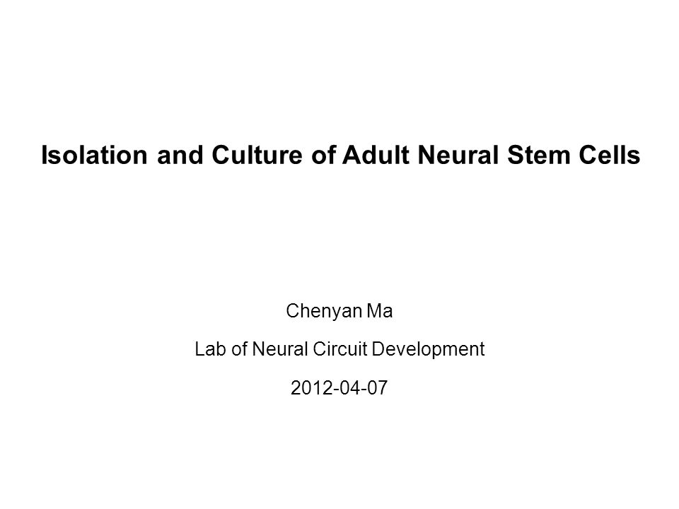 Isolation and Culture of Adult Neural Stem Cells Chenyan Ma Lab of Neural Circuit Development 2012-04-07