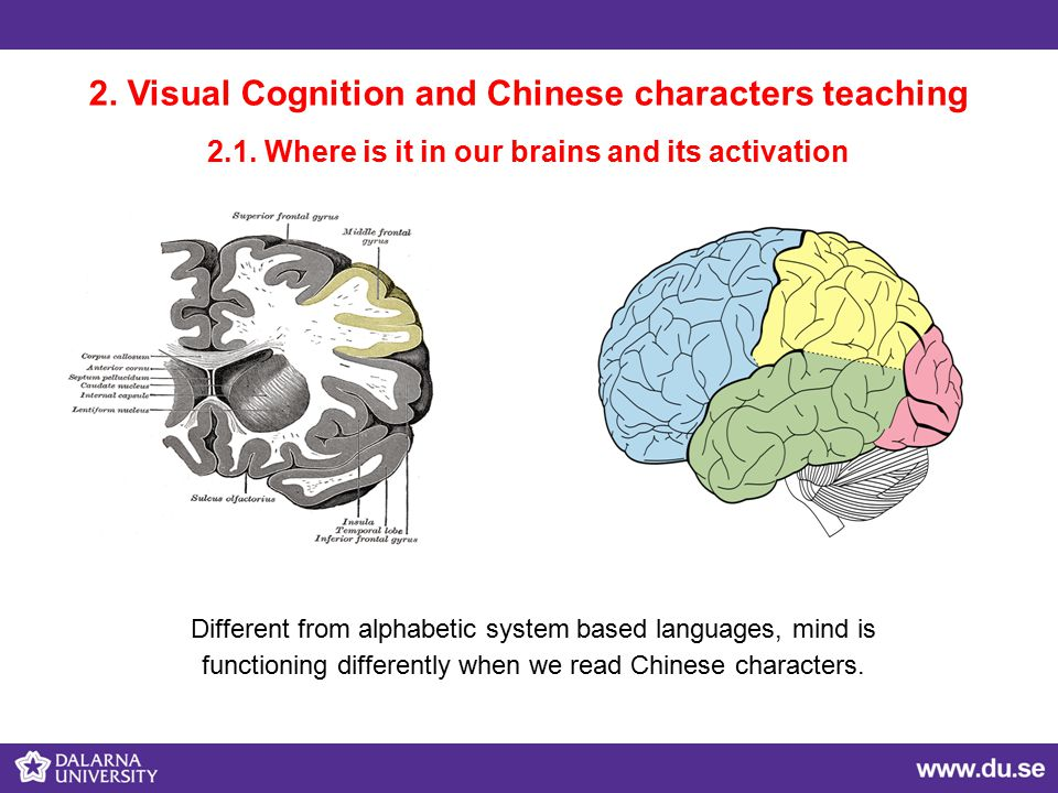 2.Visual Cognition and Chinese characters teaching 2.1.