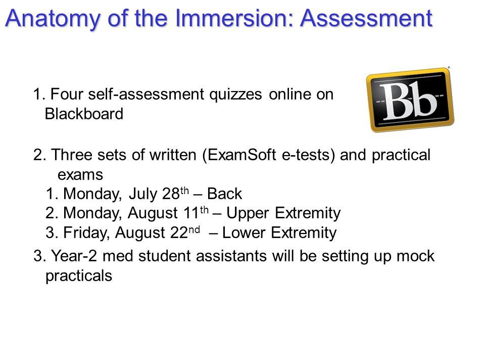 1.Four self-assessment quizzes online on Blackboard 2.