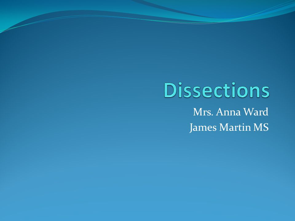 Mrs. Anna Ward James Martin MS