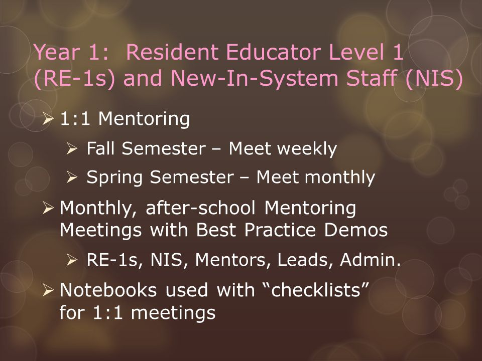 Year 1: Resident Educator Level 1 (RE-1s) and New-In-System Staff (NIS)  1:1 Mentoring  Fall Semester – Meet weekly  Spring Semester – Meet monthly  Monthly, after-school Mentoring Meetings with Best Practice Demos  RE-1s, NIS, Mentors, Leads, Admin.