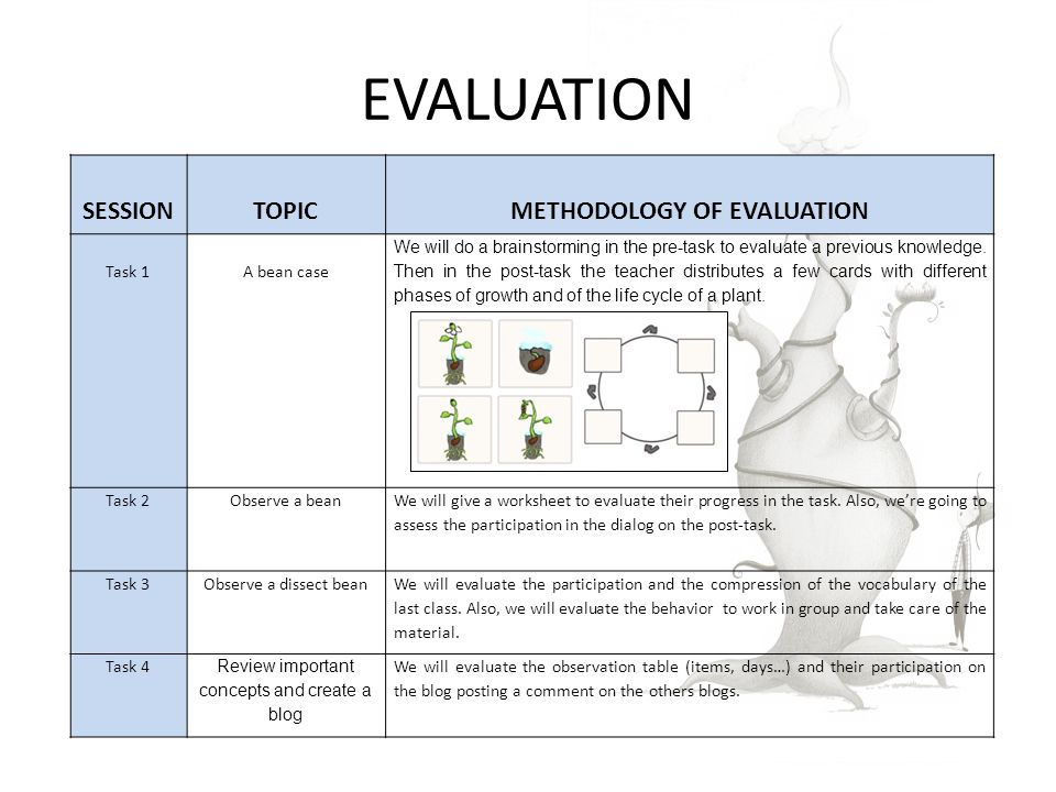 EVALUATION SESSIONTOPICMETHODOLOGY OF EVALUATION Task 1A bean case We will do a brainstorming in the pre-task to evaluate a previous knowledge.