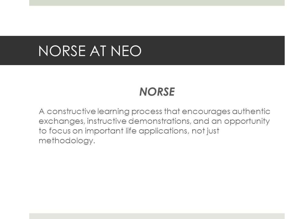 NORSE AT NEO NORSE A constructive learning process that encourages authentic exchanges, instructive demonstrations, and an opportunity to focus on important life applications, not just methodology.