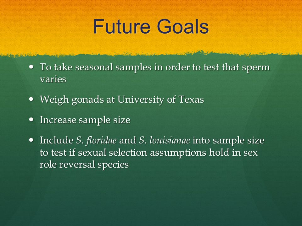 Future Goals To take seasonal samples in order to test that sperm varies To take seasonal samples in order to test that sperm varies Weigh gonads at University of Texas Weigh gonads at University of Texas Increase sample size Increase sample size Include S.