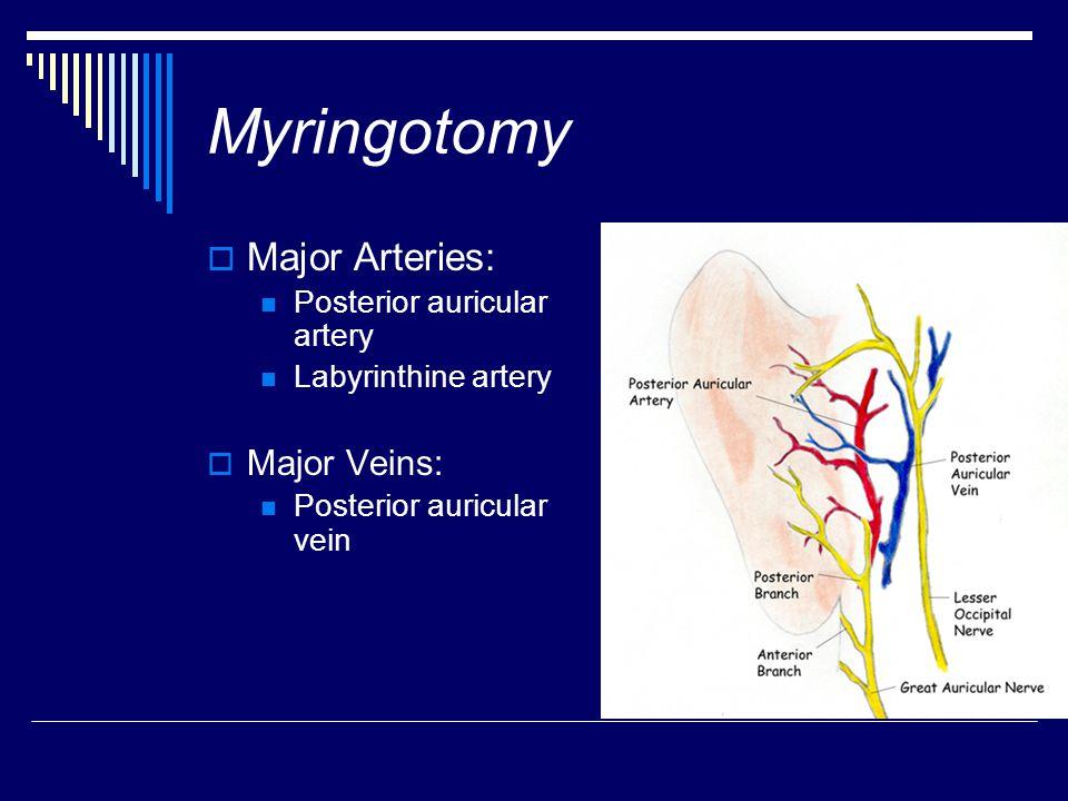 Myringotomy  Major Arteries: Posterior auricular artery Labyrinthine artery  Major Veins: Posterior auricular vein