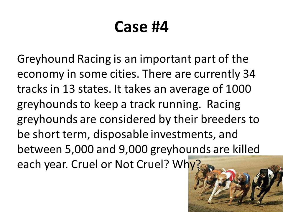 Case #4 Greyhound Racing is an important part of the economy in some cities.