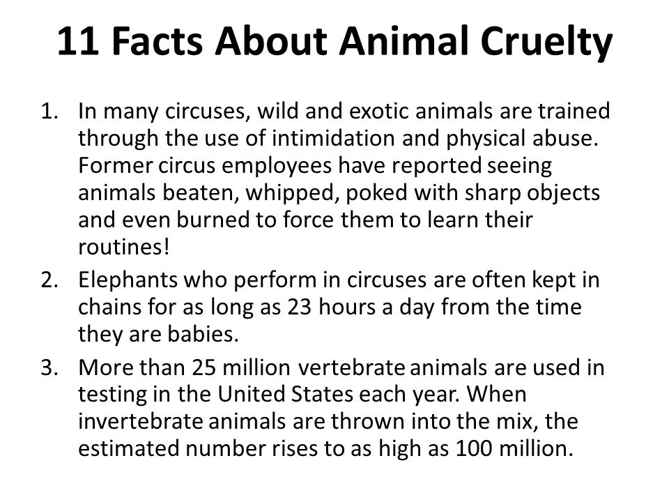 11 Facts About Animal Cruelty 1.In many circuses, wild and exotic animals are trained through the use of intimidation and physical abuse.