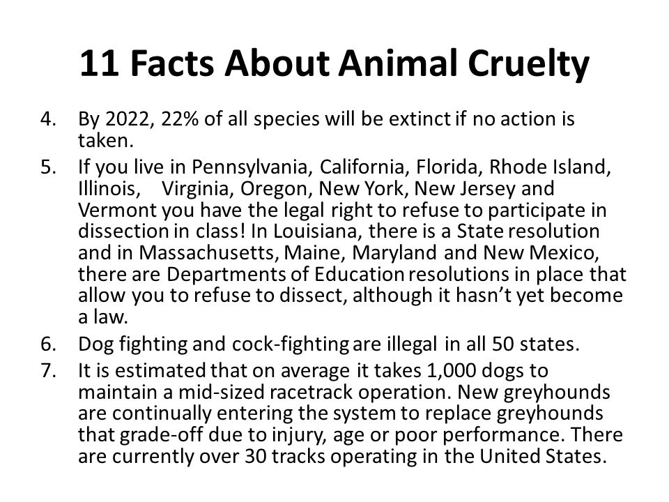 11 Facts About Animal Cruelty 4.By 2022, 22% of all species will be extinct if no action is taken.