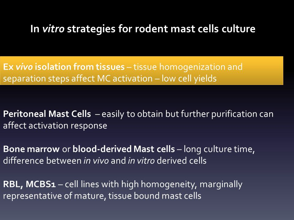 In vitro strategies for rodent mast cells culture Ex vivo isolation from tissues – tissue homogenization and separation steps affect MC activation – low cell yields Peritoneal Mast Cells – easily to obtain but further purification can affect activation response Bone marrow or blood-derived Mast cells – long culture time, difference between in vivo and in vitro derived cells RBL, MCBS1 – cell lines with high homogeneity, marginally representative of mature, tissue bound mast cells