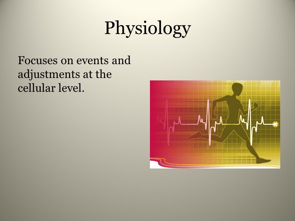 Physiology Focuses on events and adjustments at the cellular level.