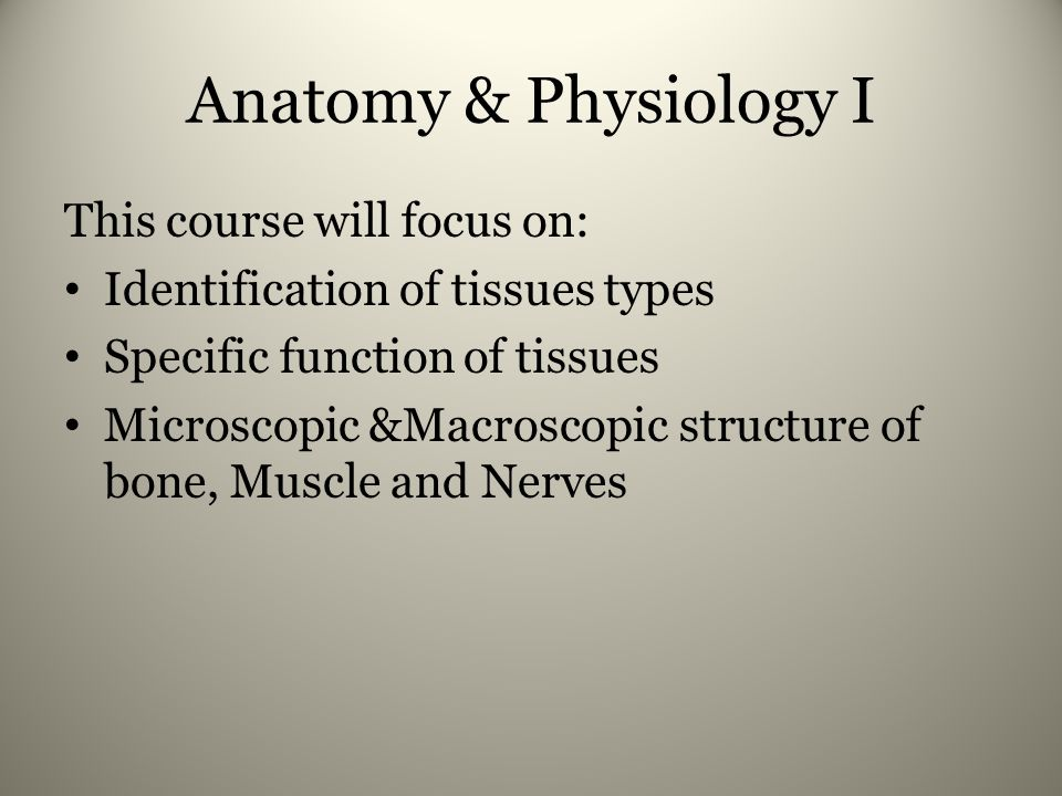 Anatomy & Physiology I This course will focus on: Identification of tissues types Specific function of tissues Microscopic &Macroscopic structure of bone, Muscle and Nerves