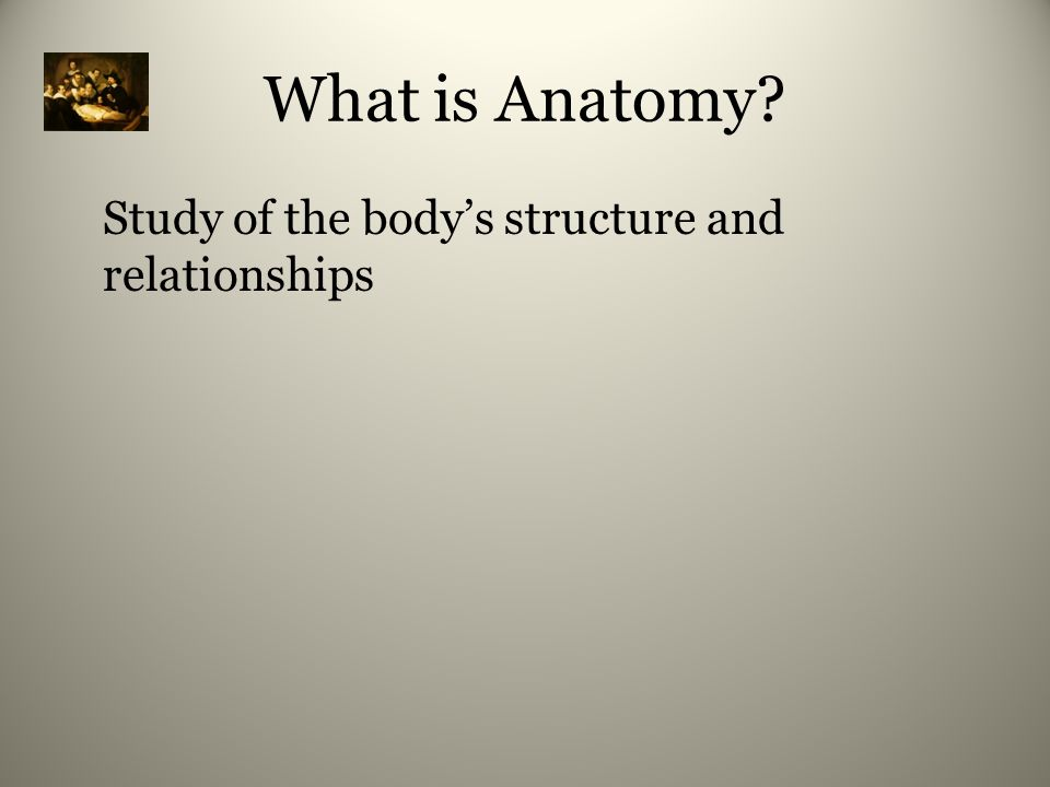 Study of the body's structure and relationships