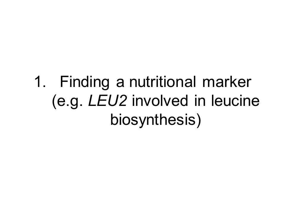 1.Finding a nutritional marker (e.g. LEU2 involved in leucine biosynthesis)