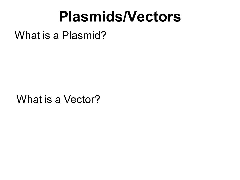 Plasmids/Vectors What is a Plasmid? What is a Vector?
