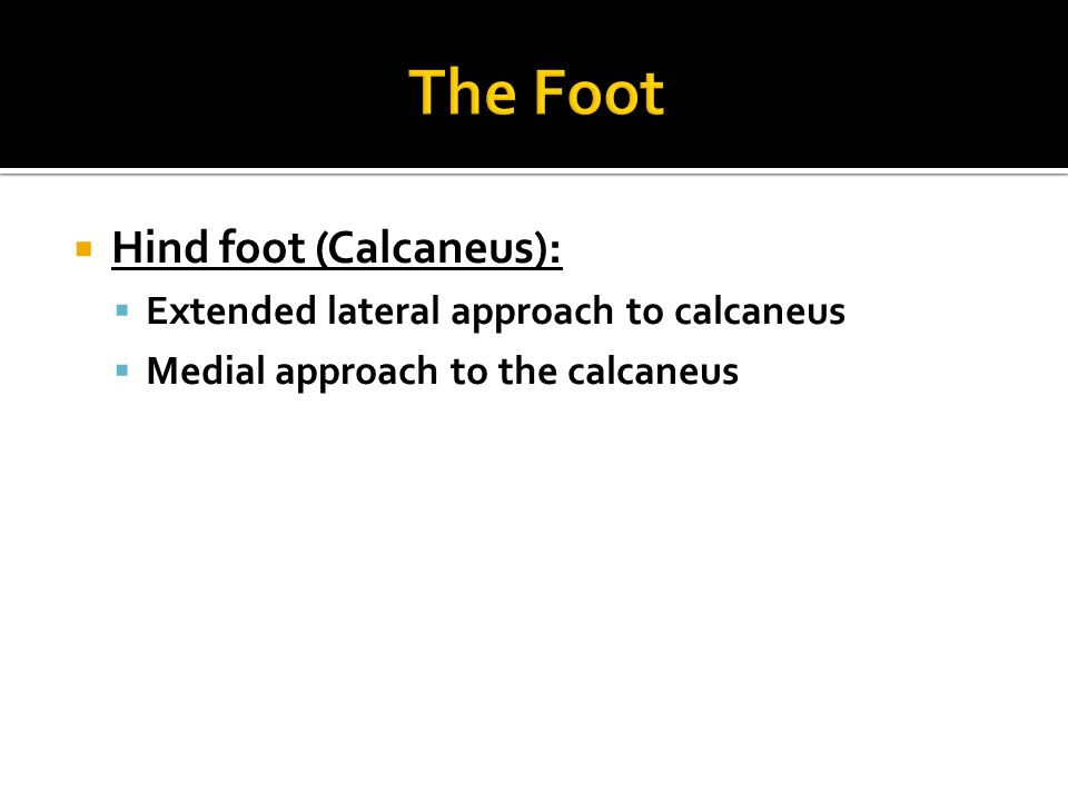  Hind foot (Calcaneus):  Extended lateral approach to calcaneus  Medial approach to the calcaneus