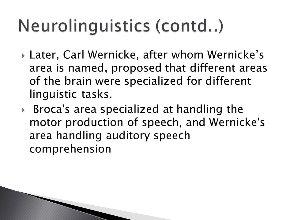  Later, Carl Wernicke, after whom Wernicke's area is named, proposed that different areas of the brain were specialized for different linguistic tasks.