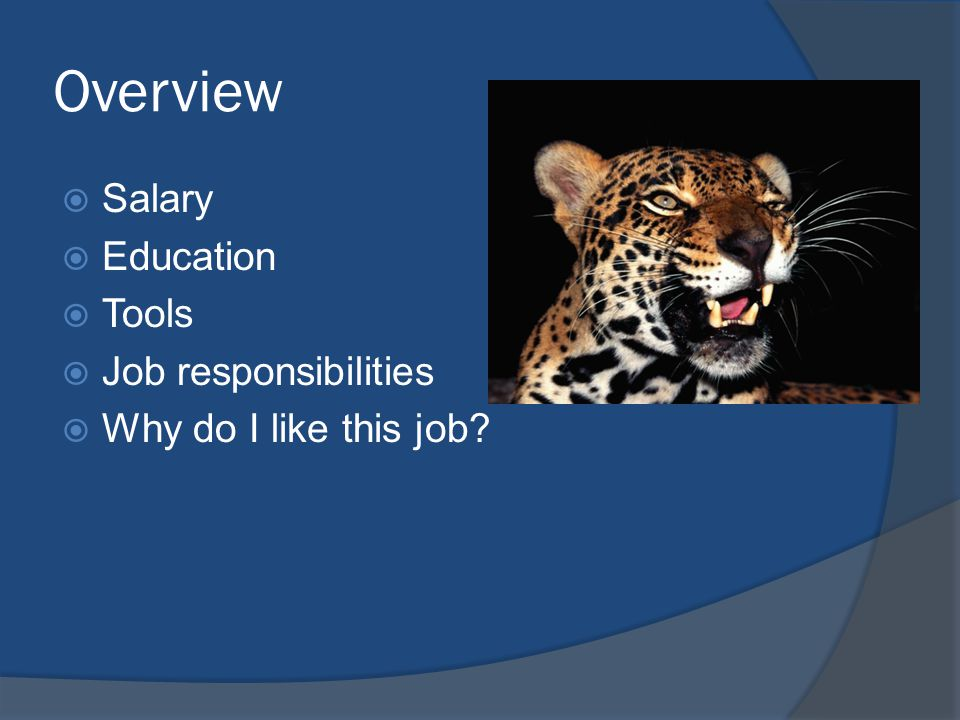 Overview SSalary EEducation TTools JJob responsibilities WWhy do I like this job?
