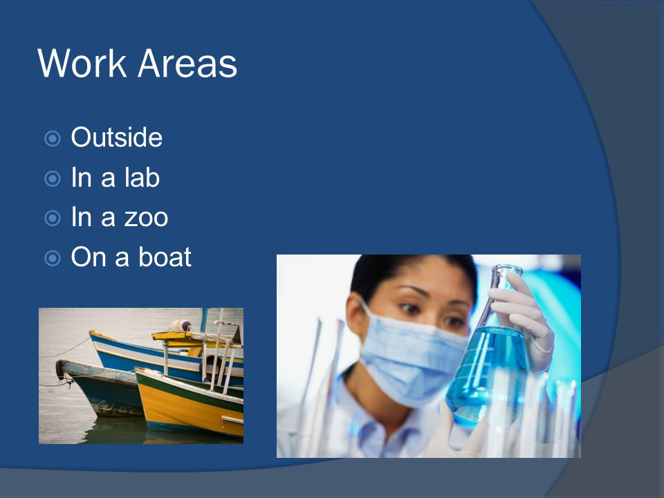 Work Areas  Outside  In a lab  In a zoo  On a boat