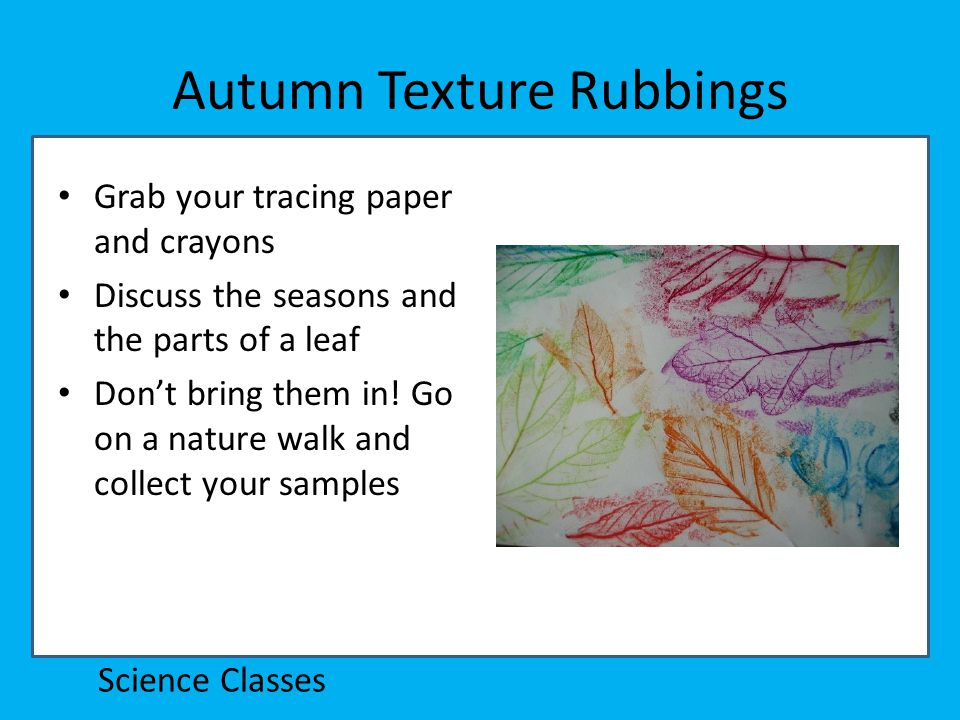 Autumn Texture Rubbings Grab your tracing paper and crayons Discuss the seasons and the parts of a leaf Don't bring them in.