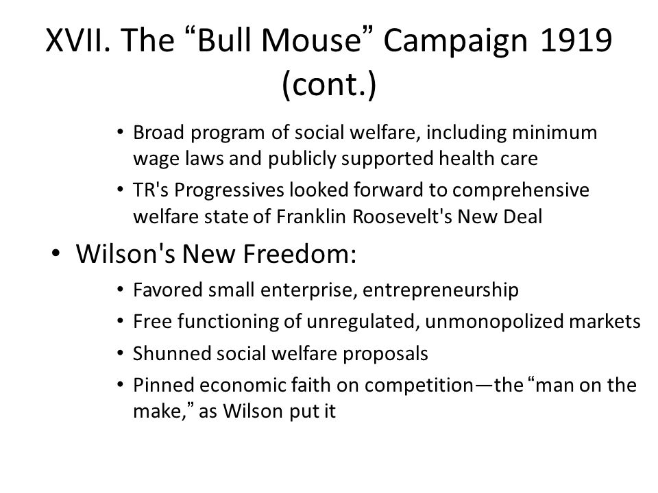 "XVII. The ""Bull Mouse"" Campaign 1919 (cont.) Broad program of social welfare, including minimum wage laws and publicly supported health care TR's Prog"