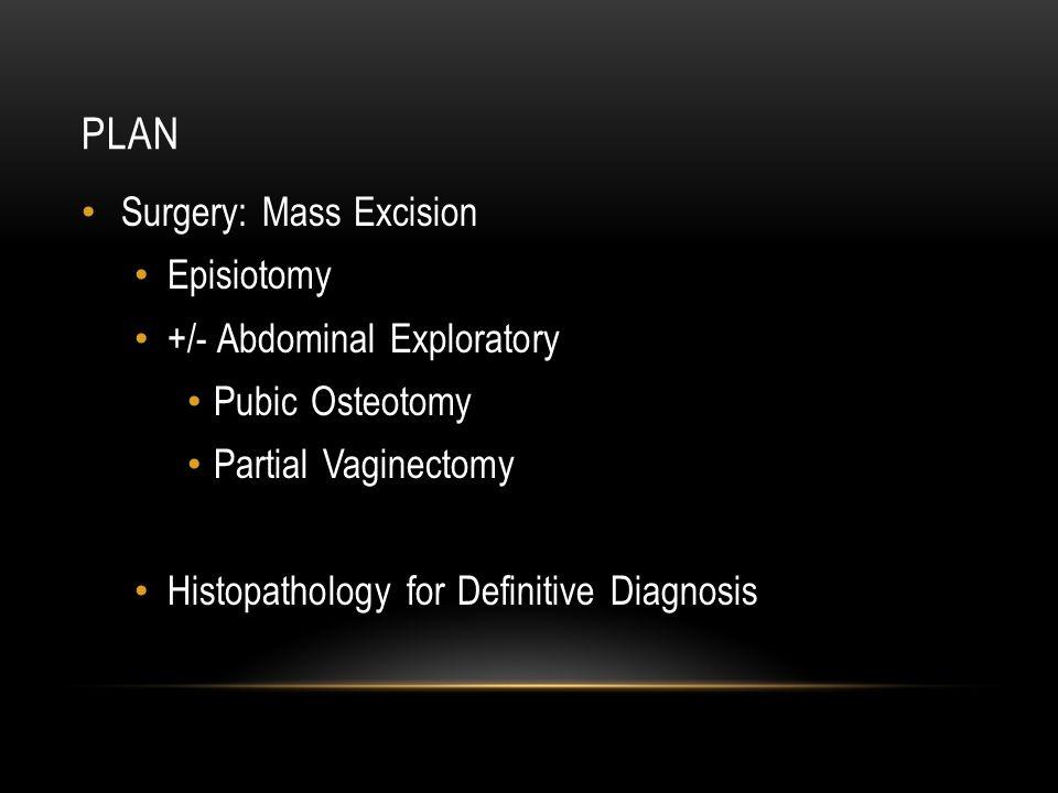 PLAN Surgery: Mass Excision Episiotomy +/- Abdominal Exploratory Pubic Osteotomy Partial Vaginectomy Histopathology for Definitive Diagnosis