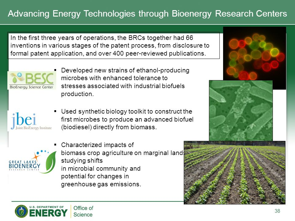  Developed new strains of ethanol-producing microbes with enhanced tolerance to stresses associated with industrial biofuels production.