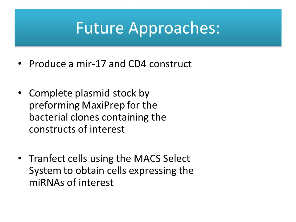 Future Approaches: Future Approaches: Produce a mir-17 and CD4 construct Complete plasmid stock by preforming MaxiPrep for the bacterial clones containing the constructs of interest Tranfect cells using the MACS Select System to obtain cells expressing the miRNAs of interest