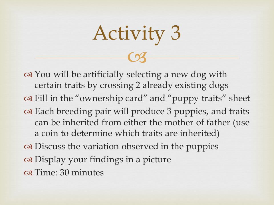 """  You will be artificially selecting a new dog with certain traits by crossing 2 already existing dogs  Fill in the """"ownership card"""" and """"puppy tra"""