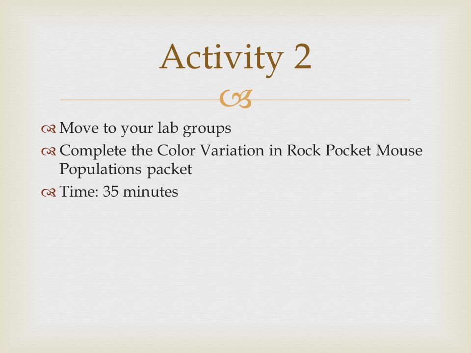   Move to your lab groups  Complete the Color Variation in Rock Pocket Mouse Populations packet  Time: 35 minutes Activity 2