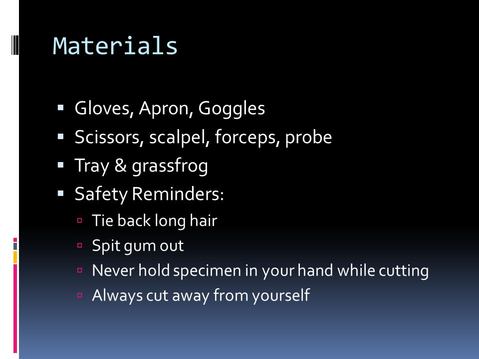 Materials  Gloves, Apron, Goggles  Scissors, scalpel, forceps, probe  Tray & grassfrog  Safety Reminders:  Tie back long hair  Spit gum out  Never hold specimen in your hand while cutting  Always cut away from yourself