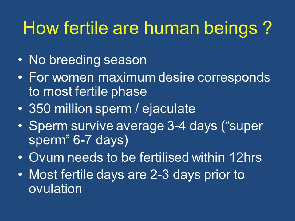 How fertile are human beings ? No breeding season For women maximum desire corresponds to most fertile phase 350 million sperm / ejaculate Sperm survi