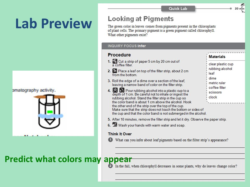 Lab Preview Predict what colors may appear