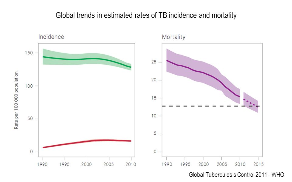Global trends in estimated rates of TB incidence and mortality Global Tuberculosis Control 2011 - WHO
